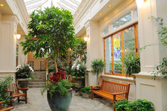 Indoor garden Stock Image