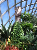 Indoor Garden. At Denver Botanic Gardens in Denver, Colorado Royalty Free Stock Photo