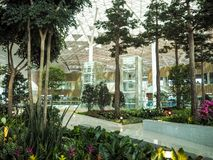 Indoor garden in the terminal 2 of Incheon International Airport royalty free stock photography
