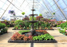 Indoor garden and water fountain Stock Photography