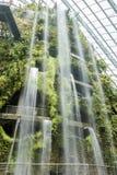 Indoor garden and waterfall Stock Images