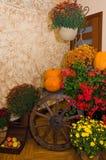 Indoor Halloween decoration Royalty Free Stock Photography