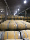 Indoor photo of wooden barrels in old winery Royalty Free Stock Photos