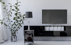 Indoor plant near tv set in living room Stock Photos