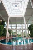 Indoor pool with white columns and foliage royalty free stock photos