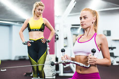 Indoor portrait beautiful sexy girl in sportswear in gym Royalty Free Stock Image
