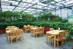 Indoor restaurant. The scenery of restaurant in glass greenhouse Royalty Free Stock Photography