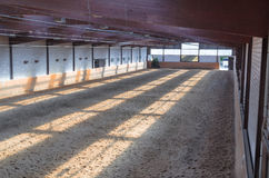 Indoor riding arena Royalty Free Stock Image
