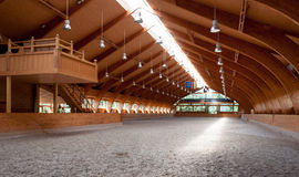 Indoor riding hall. View of indoor riding hall with sandy covering Royalty Free Stock Photo