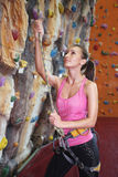 Indoor rock climber Royalty Free Stock Image