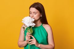 Indoor shot of romantic sweet female standing  over bright yellow background in studio, wearing green summer dress,. Closing her eyes, holding white peony stock images