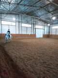 Indoor shot woman jockey training in riding hall stock images