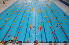 The indoor swimming pool Royalty Free Stock Image