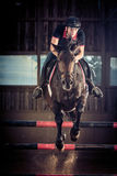 Indoors Horse Jumping Royalty Free Stock Image