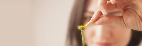 Indovinando su un fiore & su un x28; Valentine& x27; day& x29 di s; Fotografie Stock Libere da Diritti