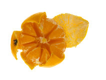 Indside de mandarine Images stock