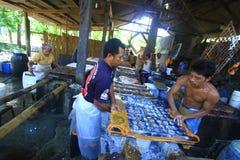 Indústria de transformação alimentar de ingredientes da soja Foto de Stock