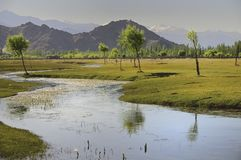 Indus river flowing through plains in Ladakh, India, royalty free stock photos