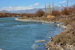 Indus River, Ladakh, India Royalty Free Stock Images
