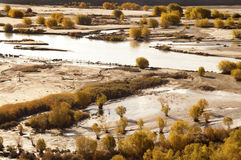 Indus Valley. In Autumn, Ladakh, Indian Himalayas, India, Asia Stock Images