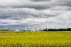 Industrail plant canola feild. Photo of an heavy industrail plant in the summer Stock Photography