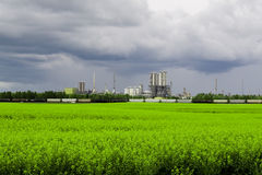 Industrail plant and green field. Photo of an heavy industrail plant in the summer Royalty Free Stock Photos