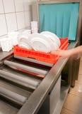 Industriële afwasmachine stock foto