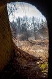 Industriële details van de verlaten steenfabriek met zijn chimn Stock Fotografie