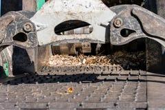 Industriële houten chipper in actie Royalty-vrije Stock Foto's