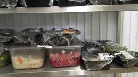 Industriële ijskasten voor opslag van salades en andere voedingsmiddelen stock footage