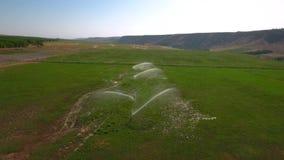 Industriële irrigatie - irrigatiesysteem die een gebied van de lucht water geven stock video