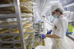 Industriële keukenarbeider 005 Stock Foto