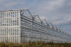 Industriële serres stock fotografie