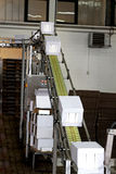 Industriële transportbandlijn Royalty-vrije Stock Afbeelding