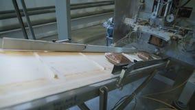 Industria alimentare borse della farina di grano saraceno sul trasportatore da andare imballaggio e trasporto di dalnayshey ai de archivi video