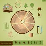Industria de la madera infographic Fotografía de archivo libre de regalías