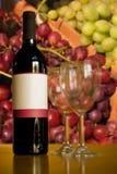 Industria de vino Foto de archivo libre de regalías