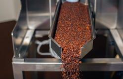 Industria del café Fotografía de archivo libre de regalías