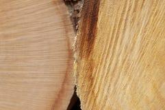 Industria del legname Immagini Stock Libere da Diritti