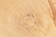 Industria del legname Immagini Stock