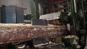 Industria del legno Vista del sawing del ceppo, primo piano archivi video