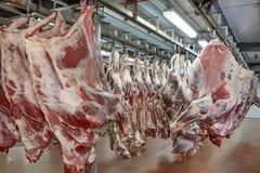 Industria della carne Fotografia Stock Libera da Diritti