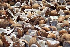 Industria della noce di cocco in Sri Lanka immagine stock