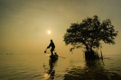Industria della pesca di Siluate Fotografia Stock Libera da Diritti