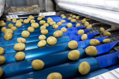 Industria di Potatoe fotografia stock