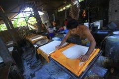 Industria di trasformazione alimentare degli ingredienti della soia Fotografia Stock