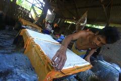 Industria di trasformazione alimentare degli ingredienti della soia Immagine Stock Libera da Diritti