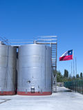 Industria enologica nel Cile immagini stock libere da diritti