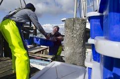 Industria pesquera  Imagen de archivo