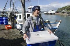 Industria pesquera  Fotos de archivo libres de regalías